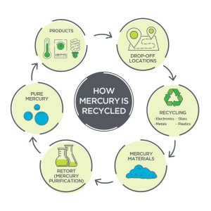 Mercury Collection Infographic